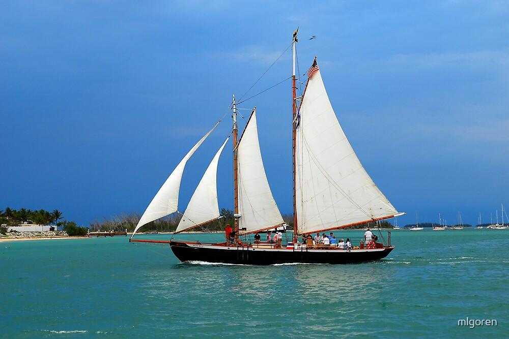 Sailing I by mlgoren