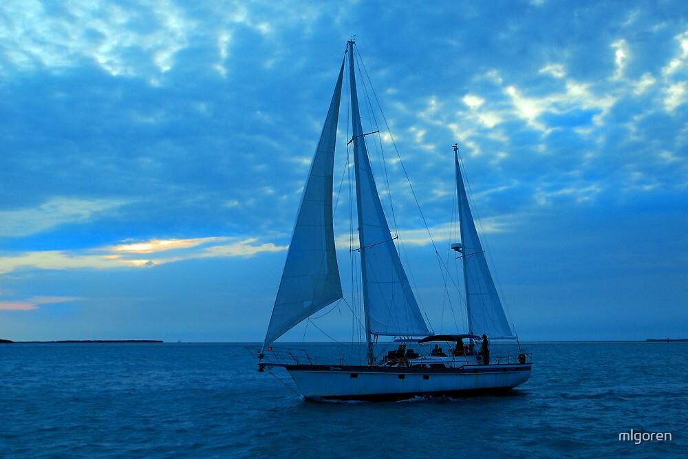 Sailing V by mlgoren