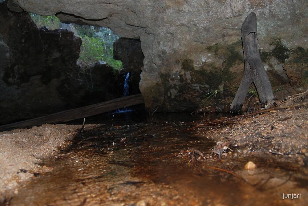 The Cave by junjari