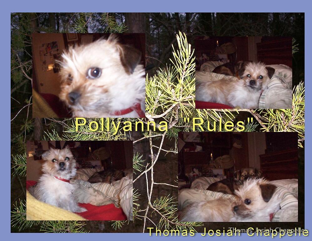 Pollyanna rules by Thomas Josiah Chappelle