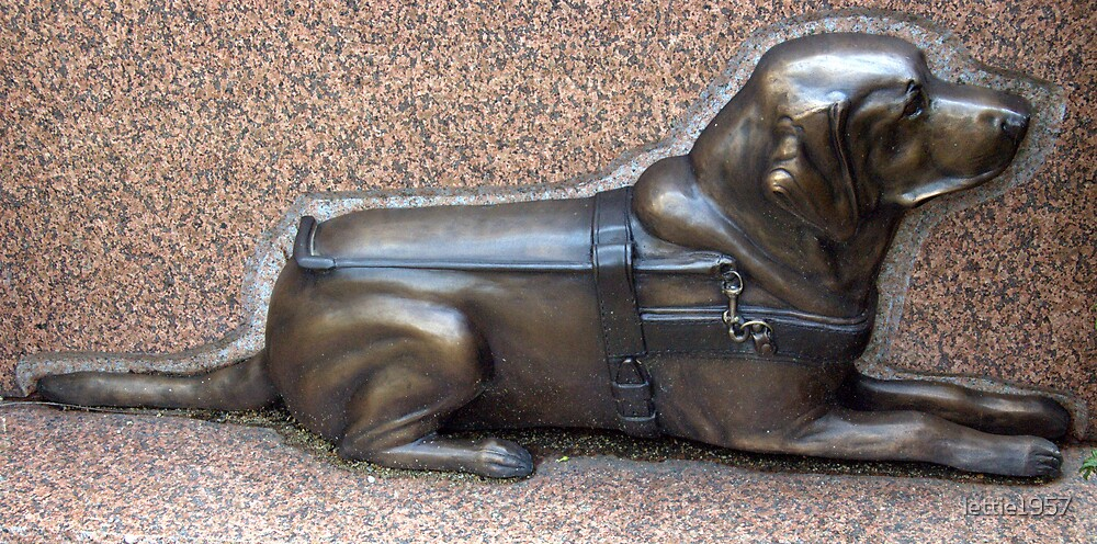 Guide Dog Statue - -  by lettie1957