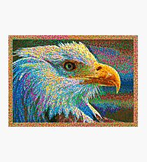 Colorful Bald Eagle Photographic Print