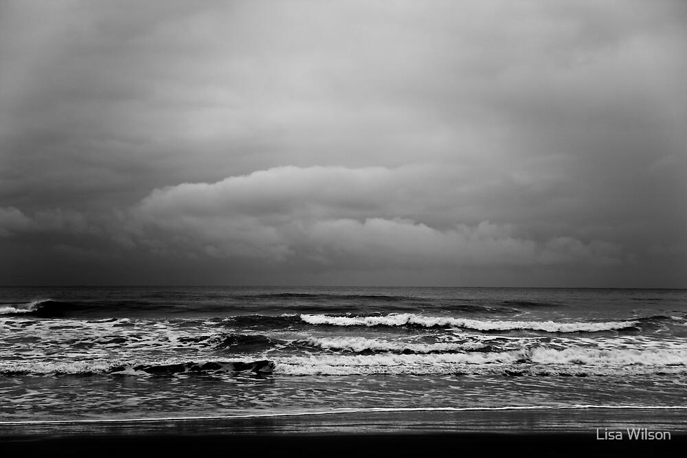 Storm Brewing II by Lisa Wilson