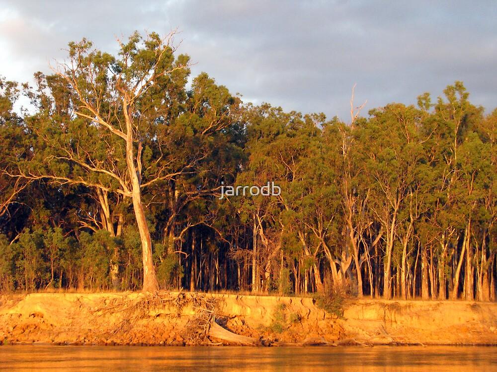 Murry River by jarrodb