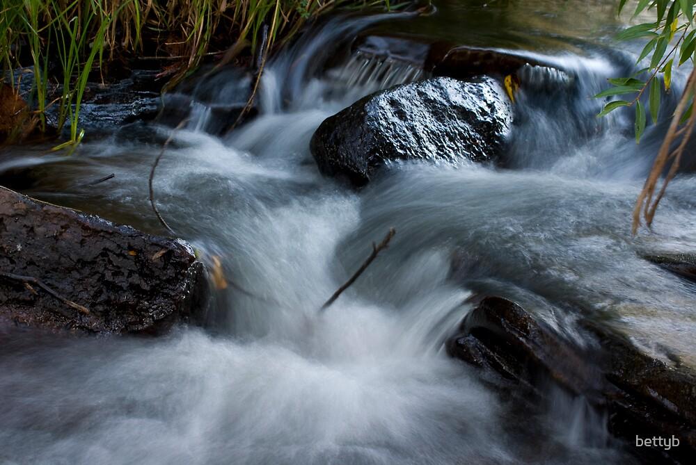 Delatite River by bettyb