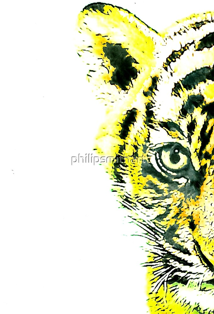 Tiger by philipsmithart