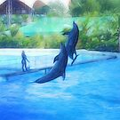 Dolphins Real Dance by marcocreazioni