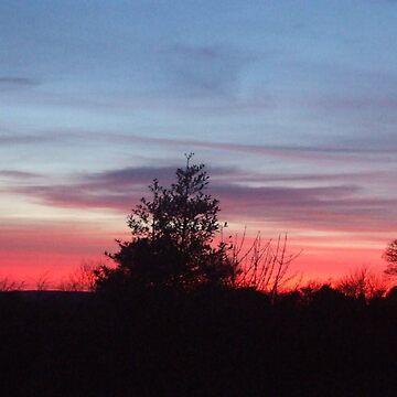 Pink Sunset  by crazydesigner12