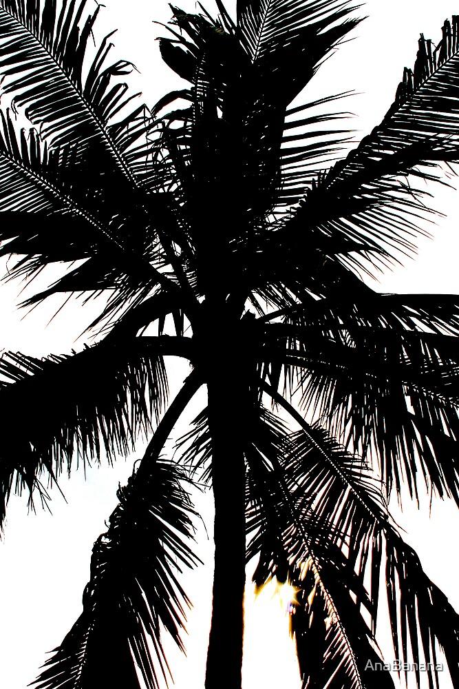 contrast palm tree by AnaBanana