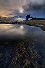 Kelp Pool Evening by Robert Mullner