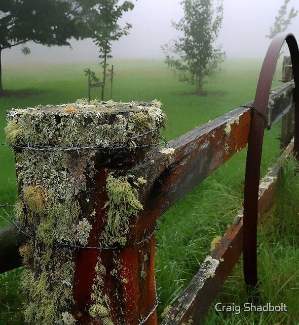 Barriers and mist by Craig Shadbolt