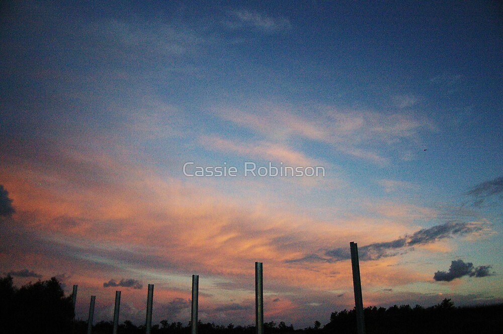 Pillars to the Sky by Cassie Robinson