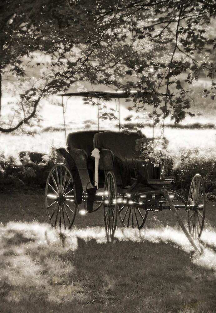 Country Carriage by Judy Olson