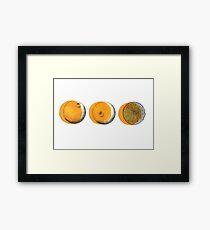 shifty orange  Framed Print