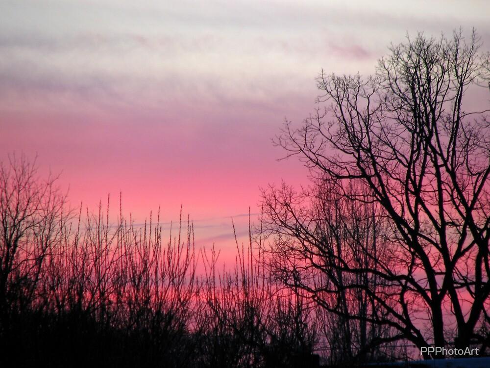 sunset by PPPhotoArt