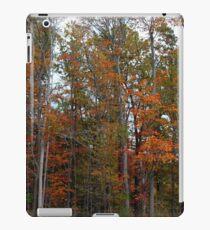 Colorful Cuyahoga iPad Case/Skin