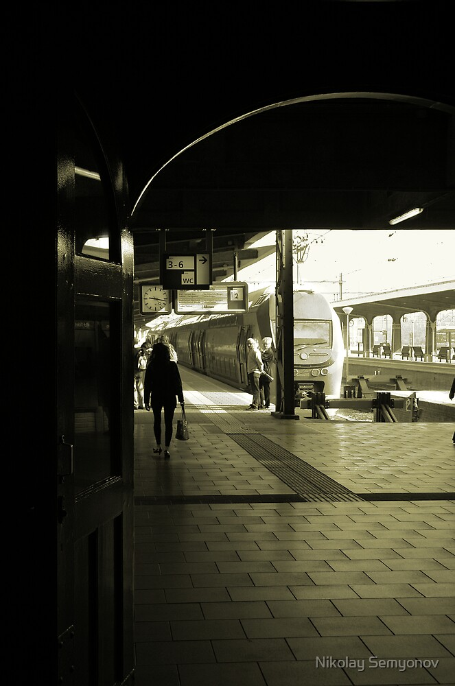 Maastricht, Train Station by Nikolay Semyonov