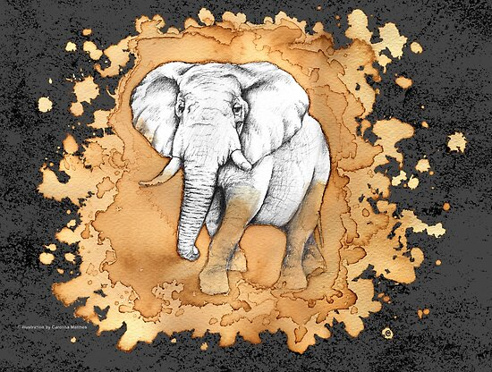Elephant by . VectorInk