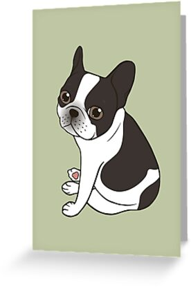 Say hello to the cute double hooded pied French Bulldog by Chee Sim