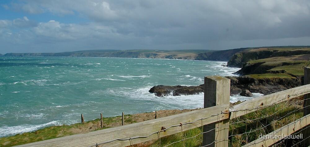 North Cornwall Coast by denisegladwell
