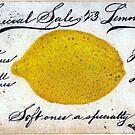 Vintage Lemons Sale Sign by mindydidit
