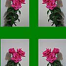 Trio of Roses for your phone by KazM