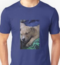 Pit Bull Puppy  T-Shirt