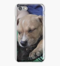 Pit Bull Puppy  iPhone Case/Skin