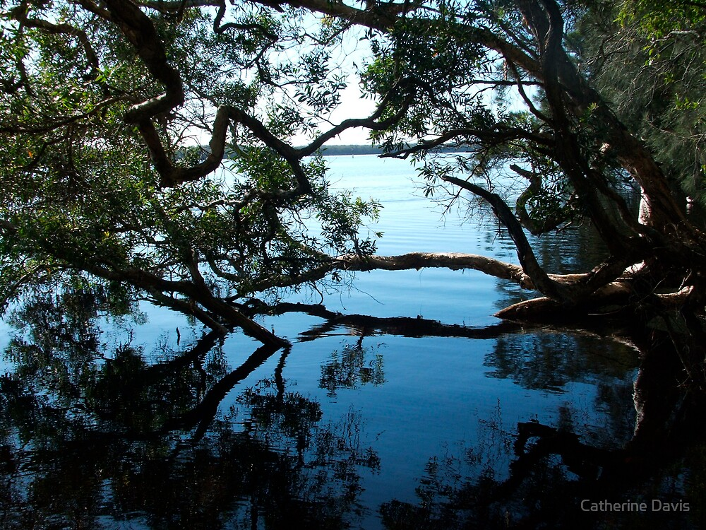 Lake Reflections by Catherine Davis