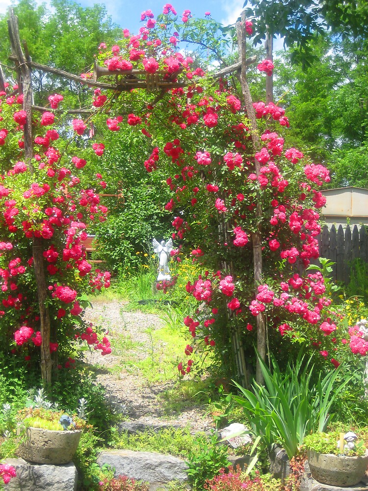 Arch of Roses by Maddys