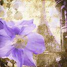 Purple Paris II by mindydidit