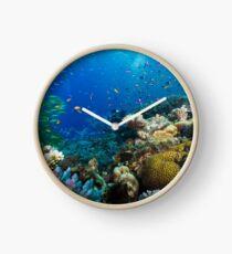 Great Barrier Reef Korallen Wunderland Uhr