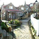 Runswick Bay, in the village by dougie1