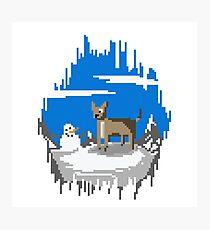 Pixel Art Mountain Llama Dog Photographic Print