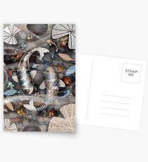 Koi Fish Pond Postcards