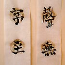 chinese calligraphy by warmsugarcube