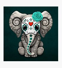 Teal Blue Day of the Dead Sugar Skull Baby Elephant Photographic Print
