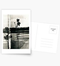 Breathless Remembrance Postcards