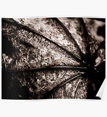 Leaf Spine Poster