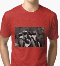 African Black-footed Penguin Tri-blend T-Shirt