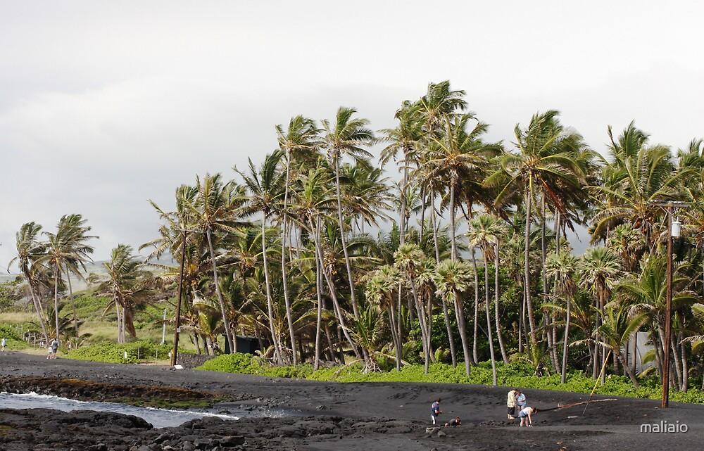 Punalu'u Black Sands Beach by maliaio
