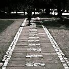 The White Brick Road by Nando MacHado