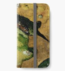 Rockpool Abstract 1 iPhone Wallet