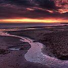 The Stream by Alan Watt