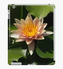 Exotic Colors - A Soft Coral Waterlily iPad Case/Skin