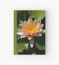 Exotic Colors - A Soft Coral Waterlily Hardcover Journal