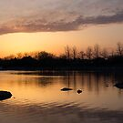 Gloaming - Subtle Pink, Lavender and Orange at the Lake by Georgia Mizuleva