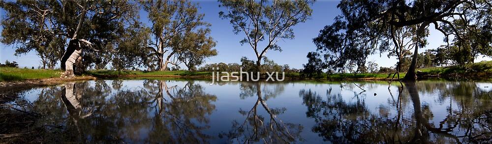 Reflection by jiashu xu