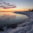 Small Cove Pink and Snowy Dawn by Georgia Mizuleva