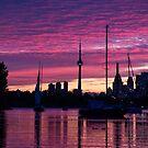 Toronto Skyline - the Boats Are Coming In by Georgia Mizuleva